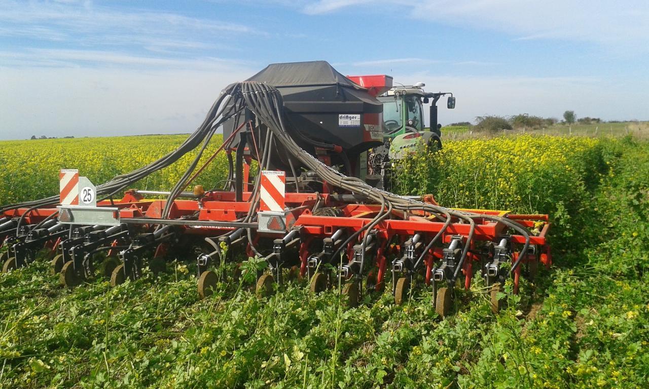 Sarl driager g rant fabien driat semis direct et simplifi dans l 39 aube couverts v g taux - Culture de l echalote ...